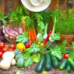 Why Grow Your Own Vegetables