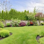 Tips for a beautiful yard